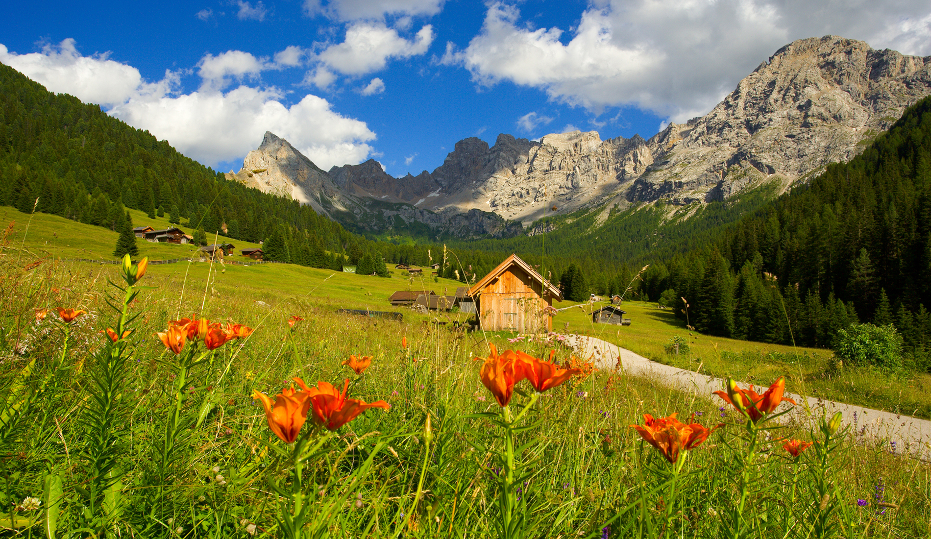 Dolomiti unesco incoming veneto for Foto desktop estate